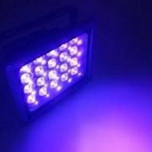 بلک لایت (black light) چیست؟ محصولاتش را از کجا تهیه نماییم؟